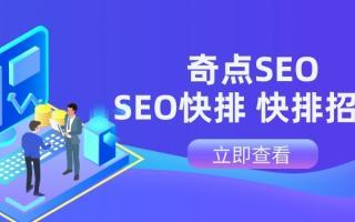 seo网站优化软件-网站优化软件哪种好?
